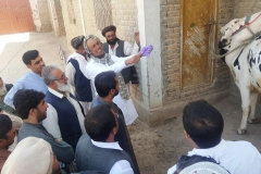 9.Demonstration on removal of gloves Chaman